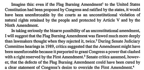 Flag desecration amendment